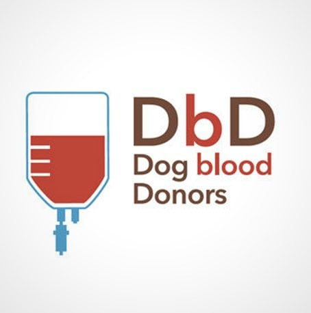 DBD – Dog blood donors